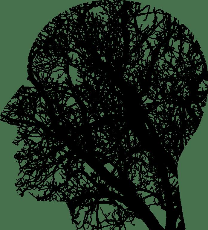 Электроэнцефалографическое Исследование Показывает Влияние Амиотрофического Латерального Склероза на Нейронные Сети